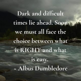 Seems fitting.  #bookishquotes #bookishquote #quotestagram #quotes #dumbledorequotes #dumbledore #harrypotter #gobletoffire #dumbledoresarmy #socialdistancing #doyourpart #flattenthecurve